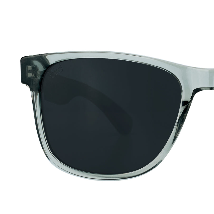 OTUS-Bird-Sunglasses-Clear-front-detail