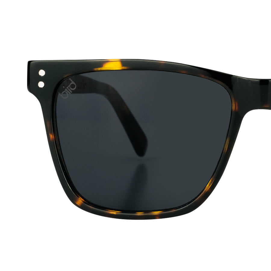 STRIX-Bird-Sunglasses-Tortoise-front-detail