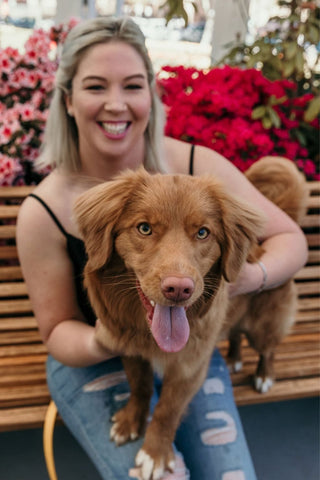 A blonde girl, smiling while holding a red dog. Nova Scotia Duck Tolling Retriever lunging at the camera with tongue out. Sitting on park bench with red flowers in background