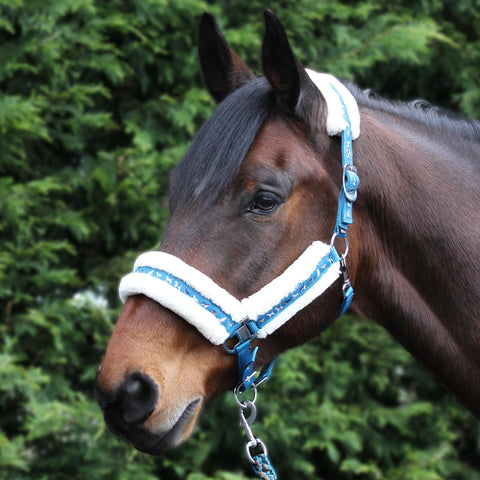 Dogs Print Headcollar & Leadrope Set