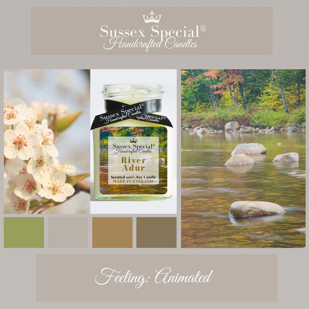 Sussex Special River Adur Luxury Scented Natural Soy Candle English Pear, Quince, White Freesia, Wild Rose, Rhubarb, Patchouli, Amber, White Musk
