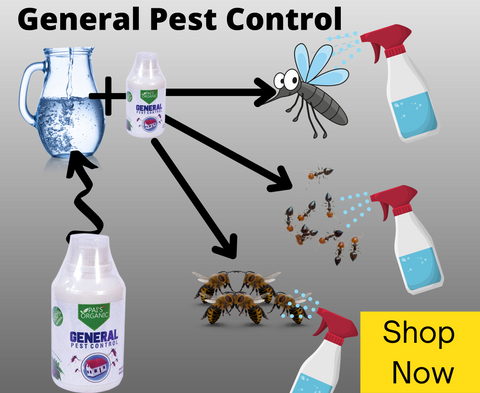 general pest control - insect killer