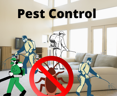 Number of times pest control needed