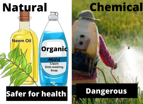 why natural pesticide not chemical based