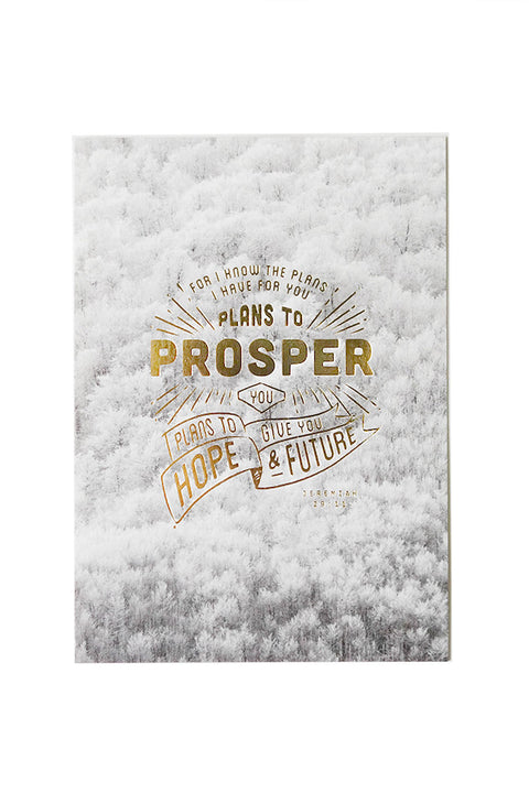 Plans To Prosper You {Card}