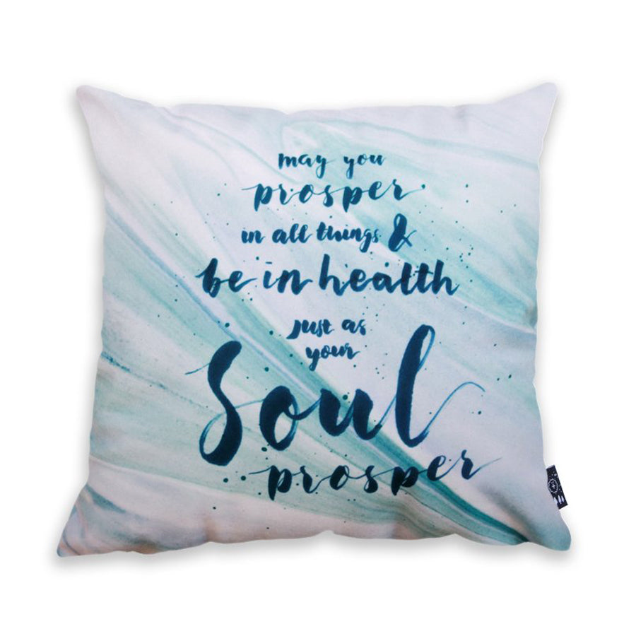 Premium velvet cushion cover with brush swatch design. 'May you prosper in all things & be in health just as your soul prospers'.