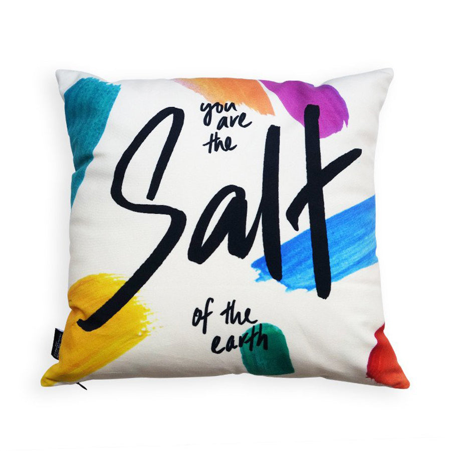 Premium 45cmx45cm pillow cover made of super soft velvet, brush colour theme. With hidden zip feature. Features 'You are the salt of the earth'.