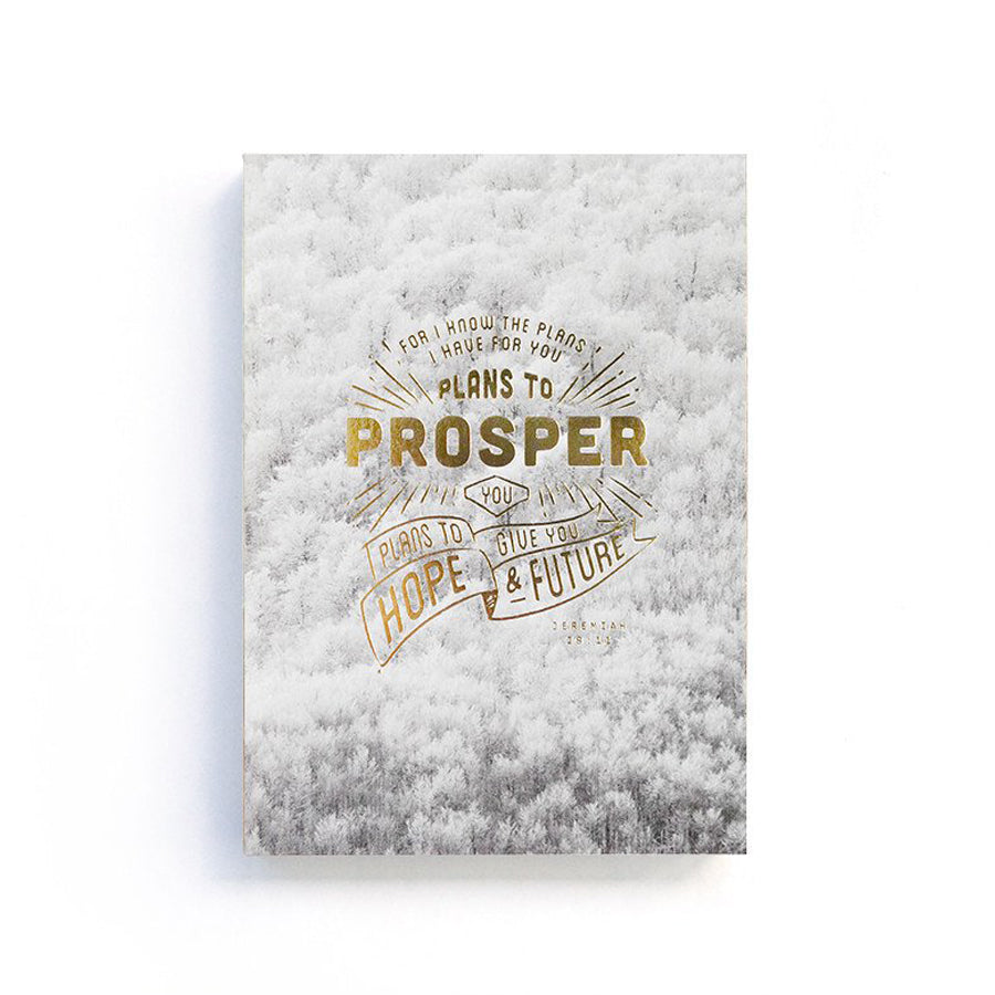192 Pages notebook made of eco-friendly tree-free palm paper. Measures 105mm (W) x 148mm (H) x 17mm (D). 400gsm cover, 80 gsm inlay, coptically binded. Features ' For the plans I have for you plans to prosper you' Christian notebook.