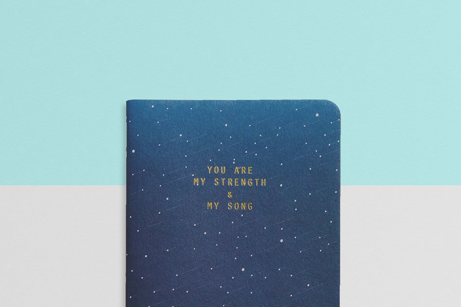 courage heynewday strength and song pocket notebook