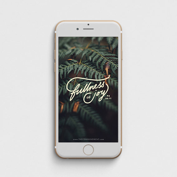Fullness of Joy Iphone wallpaper