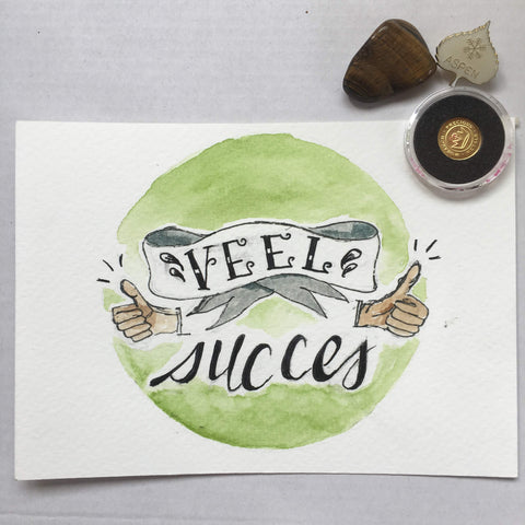 dutch postcard: veel success / good luck
