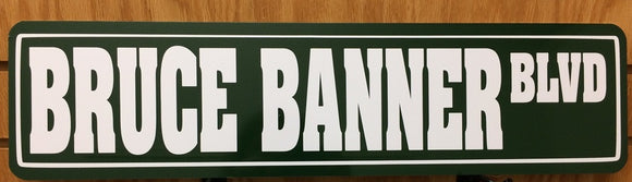 Bruce Banner Blvd Metal Street Sign