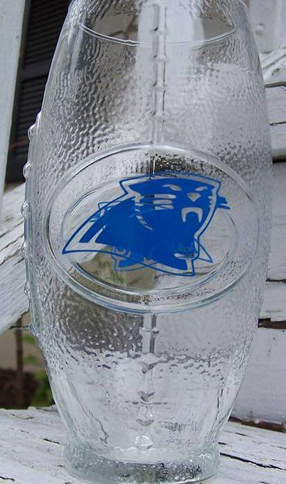 NFL Carolina Panthers Football Glass