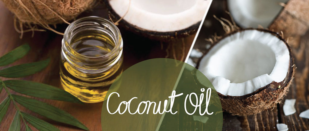 Coconut Oil:  What's all the fuss about?