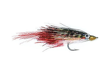 sailfish roosterfish dorado saltwater fly