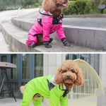 The Dog Face Raincoat