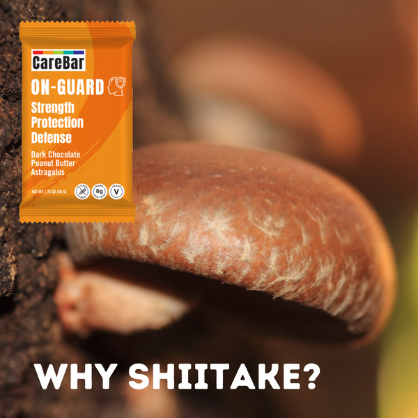 Ingredient Spotlight: Shiitake