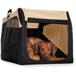 Foldable dog box