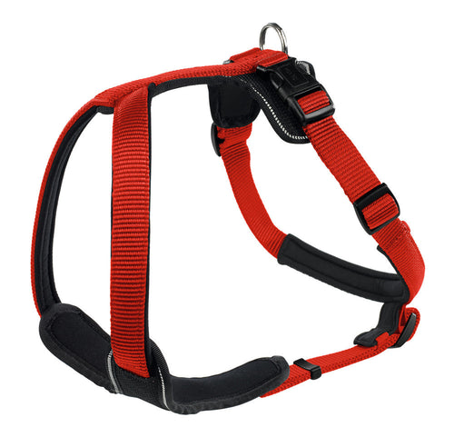 Harness Neopren