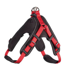 Harness Neopren Vario Quick