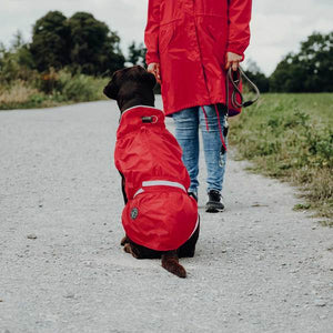 Raincoat for dogs Uppsala Rain