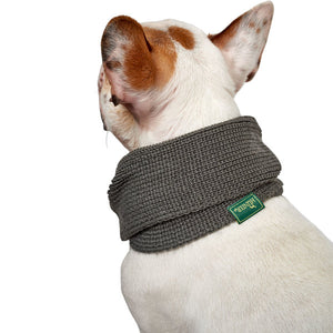 Dog scarf Nancy