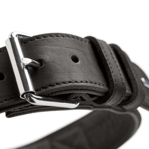 Training collar with handle Larvik