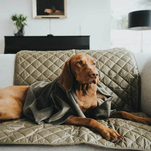 Dog blanket Hooge