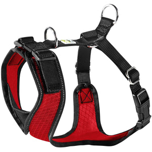 Harness Manoa Vario Rapid
