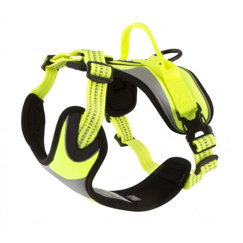 Dazzle Harness