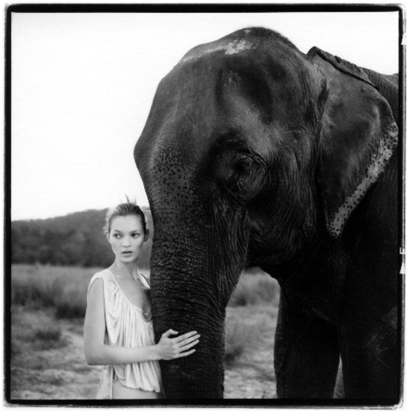 Arthur Elgort - Kate and Elephant Nepal