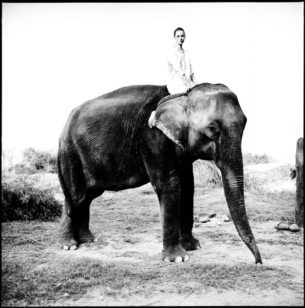 Arthur Elgort - Kate on the Elephant , Népal 1994 pour Vogue