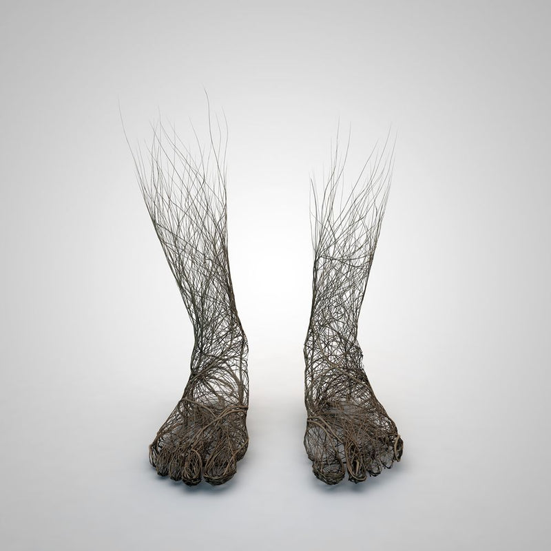 Gregoire A. Meyer - Roots
