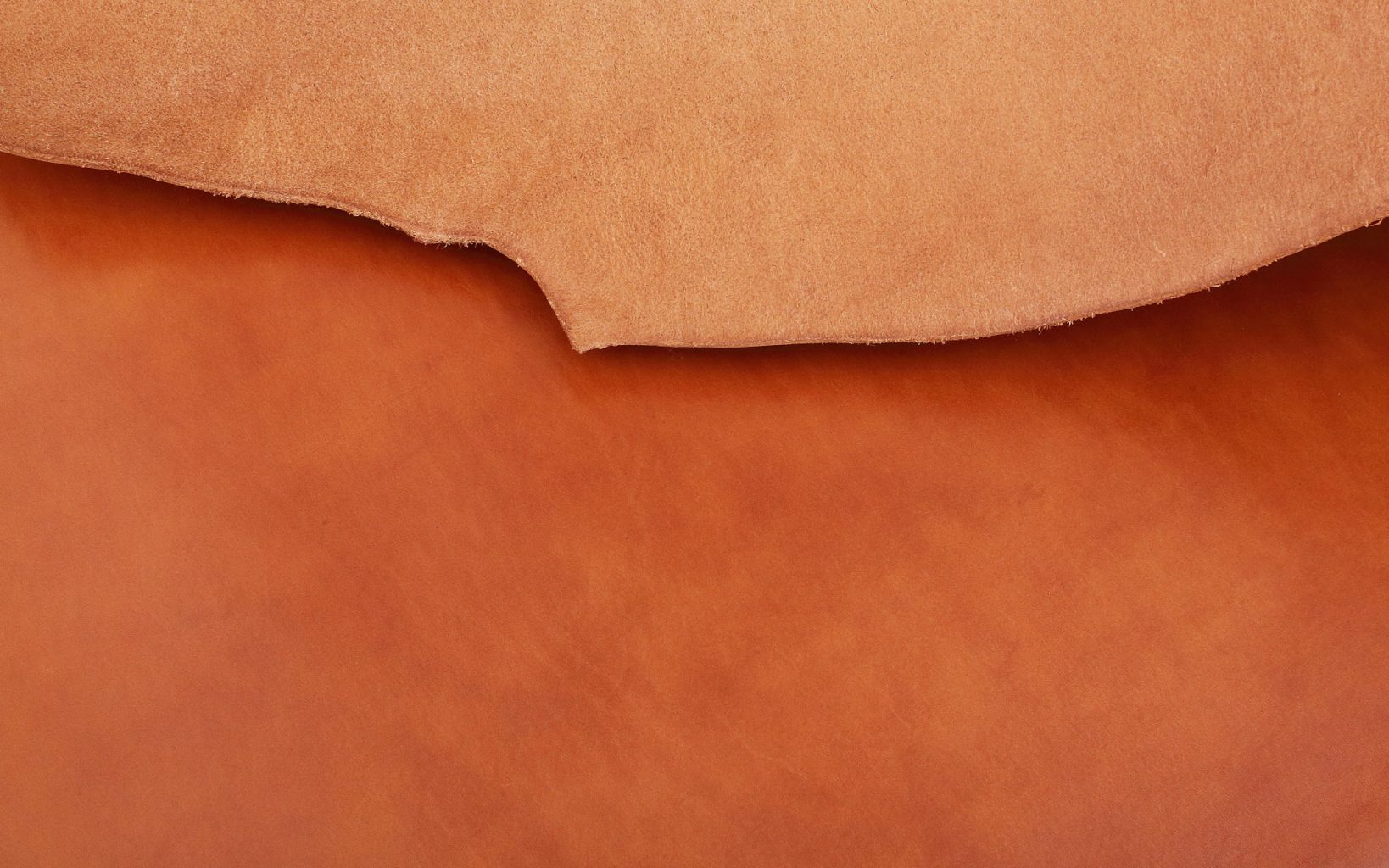 Thick oil leather of Tochigi leather sold by Hashimoto Sangyo