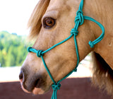 Average Horse 4 Knot Rope Halter & Lead Set (TEAL)