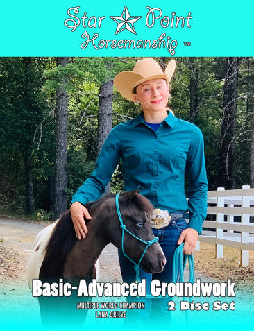 Mini-Pony Basic-Advanced Groundwork Program