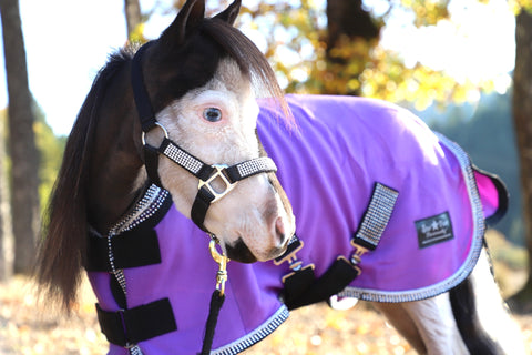 Mini-Pony Bling Fleece Coolers