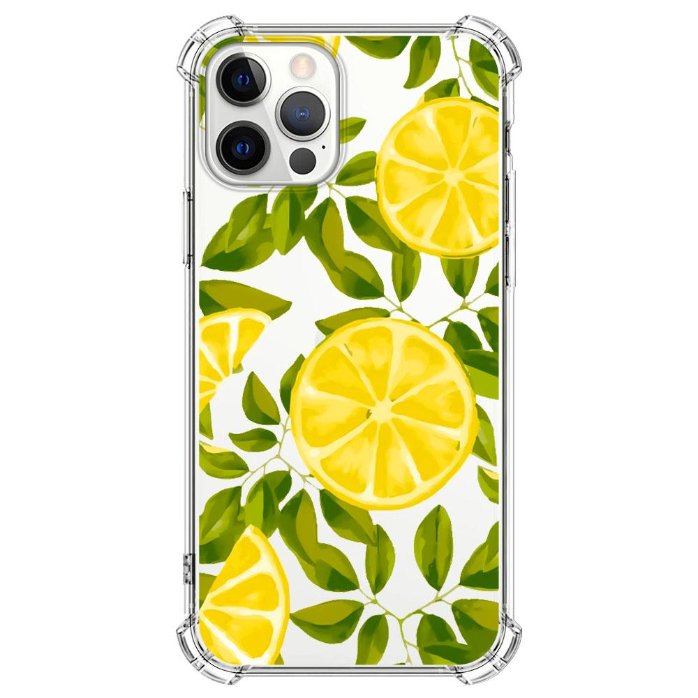 Lemon leaves and lemon slices