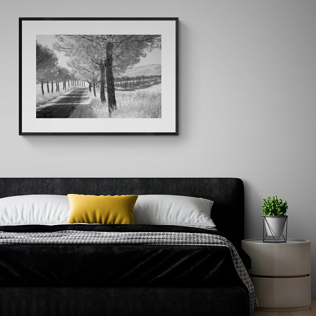 A Mounted and framed photograph of the Avenue of Trees set in a bedroom.