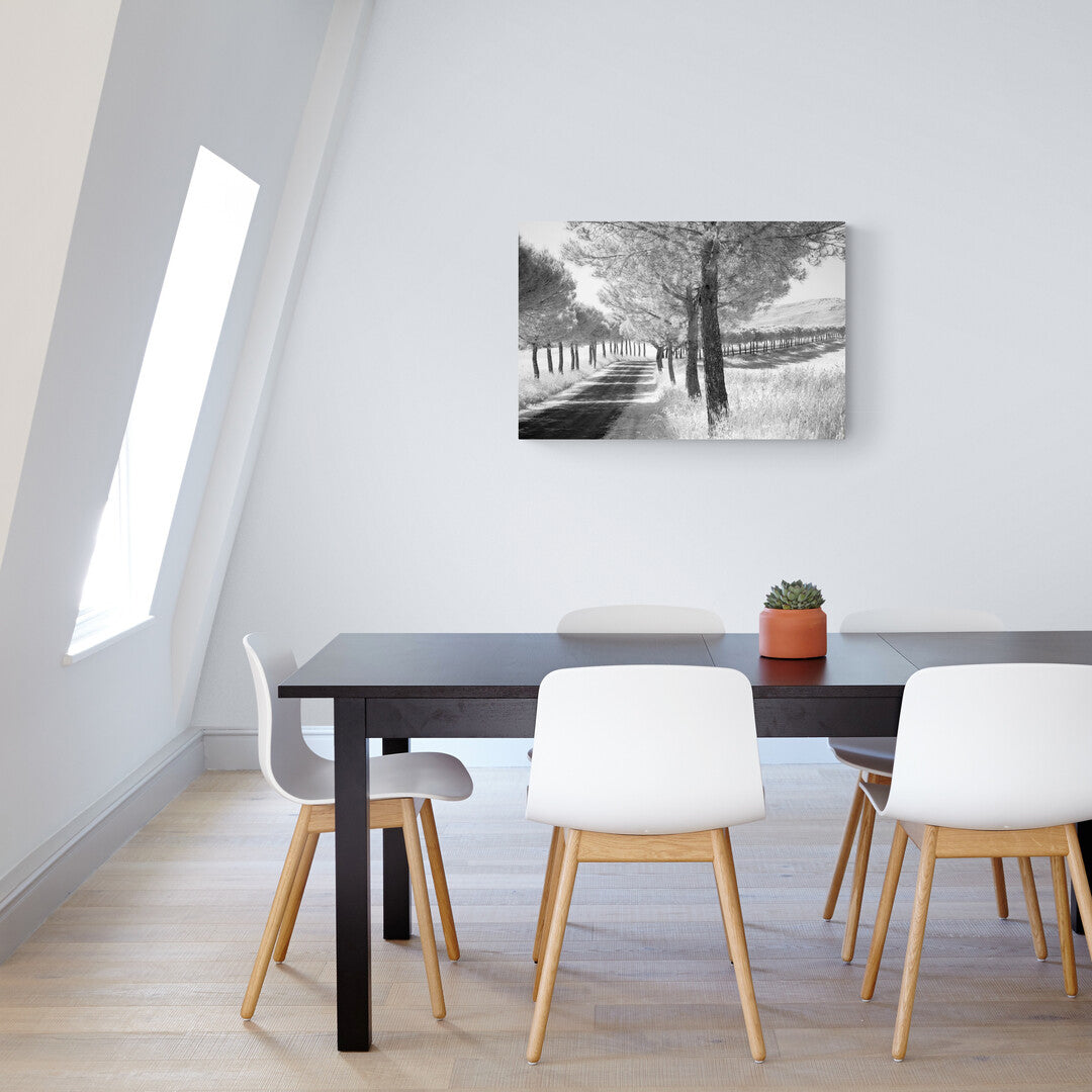 Showing the Avenue of Trees image printed on Aluminium in a room