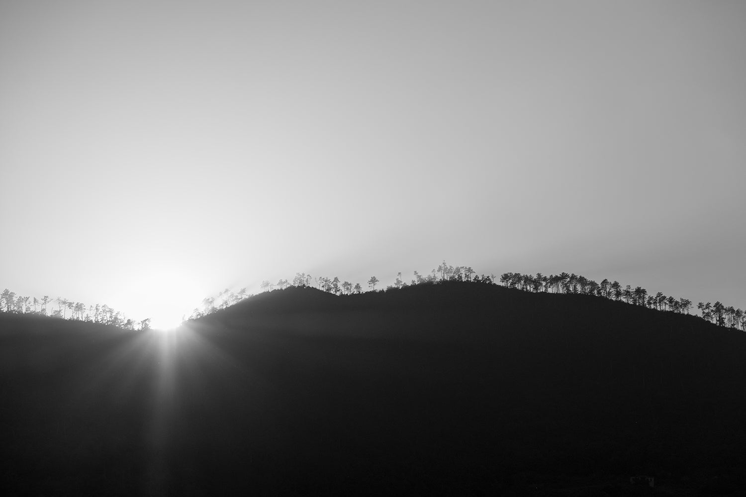 A monochrome image of a sunset behind the hills above Monterosso highlighting the treeline at its summit.
