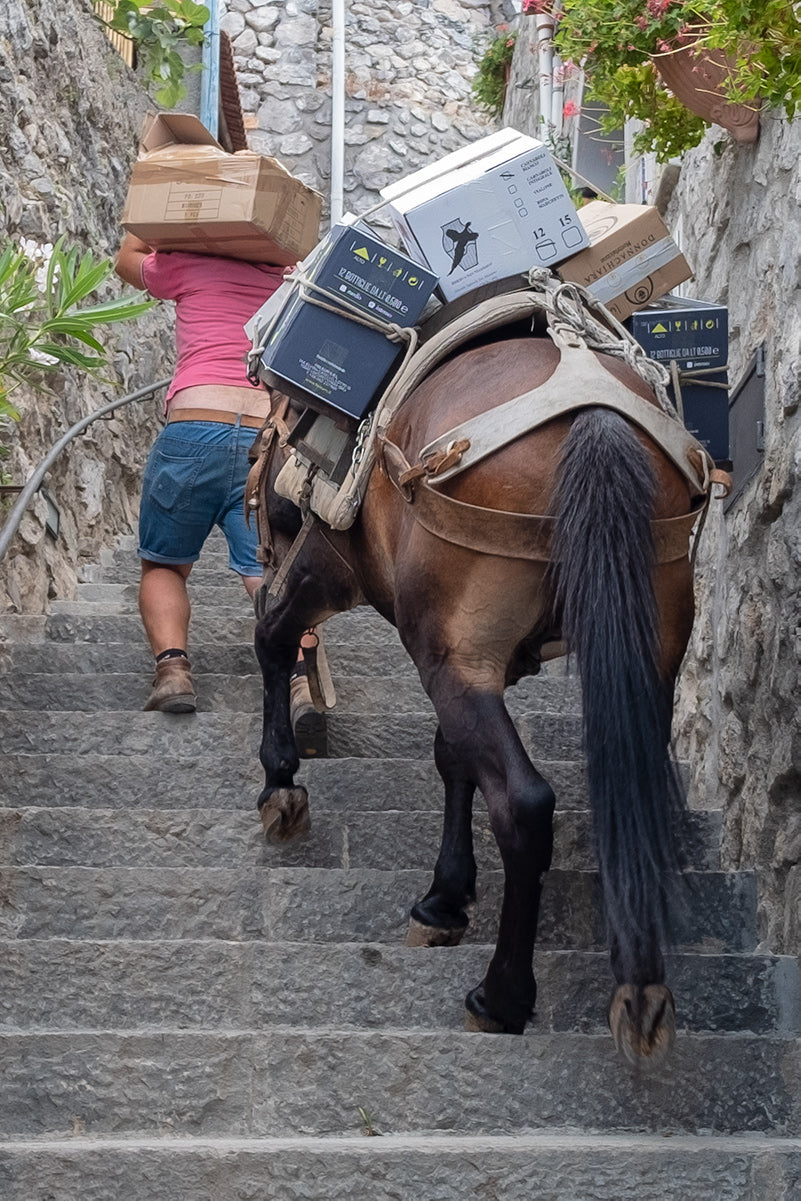 Wine delivery by horse on the 'Path of the Gods' a 6.5km clifftop trail along the Amalfi Coast⁠