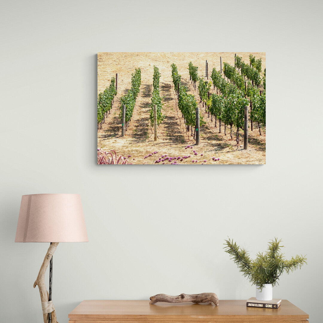 Hanging above a desk, an aluminium photograph of vines on the Odette Winery, Napa looking like rows of soldiers standing to attention