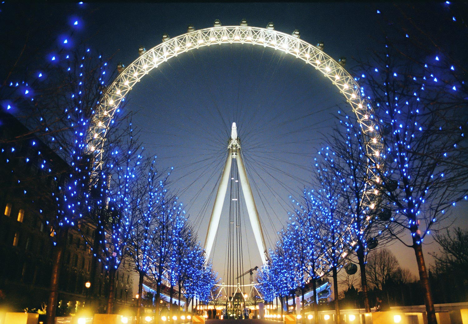 The illuminated London Eye at night, taken the year after it opened from a low viewpoint beyond the Blue lit trees in Jubilee Gardens