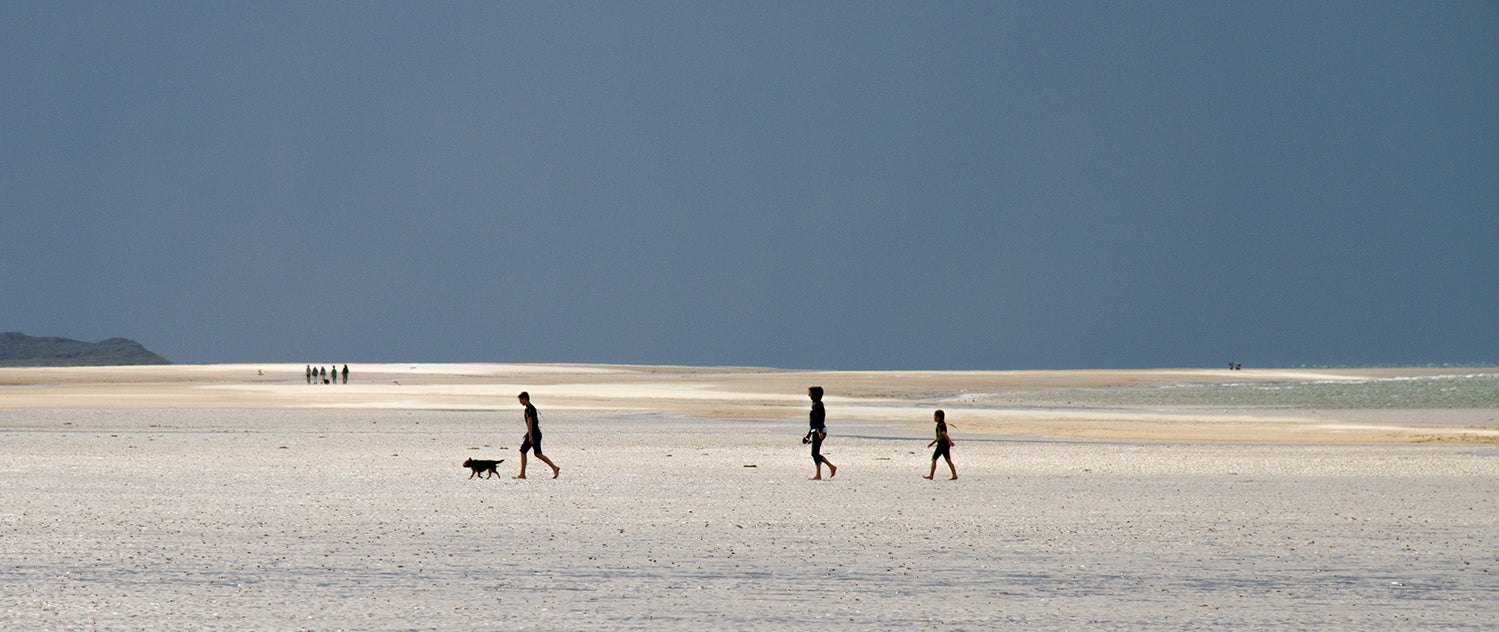 A family and their dog enjoying the vast, unspoilt and almost empty Holkham beach on an August day in Norfolk.