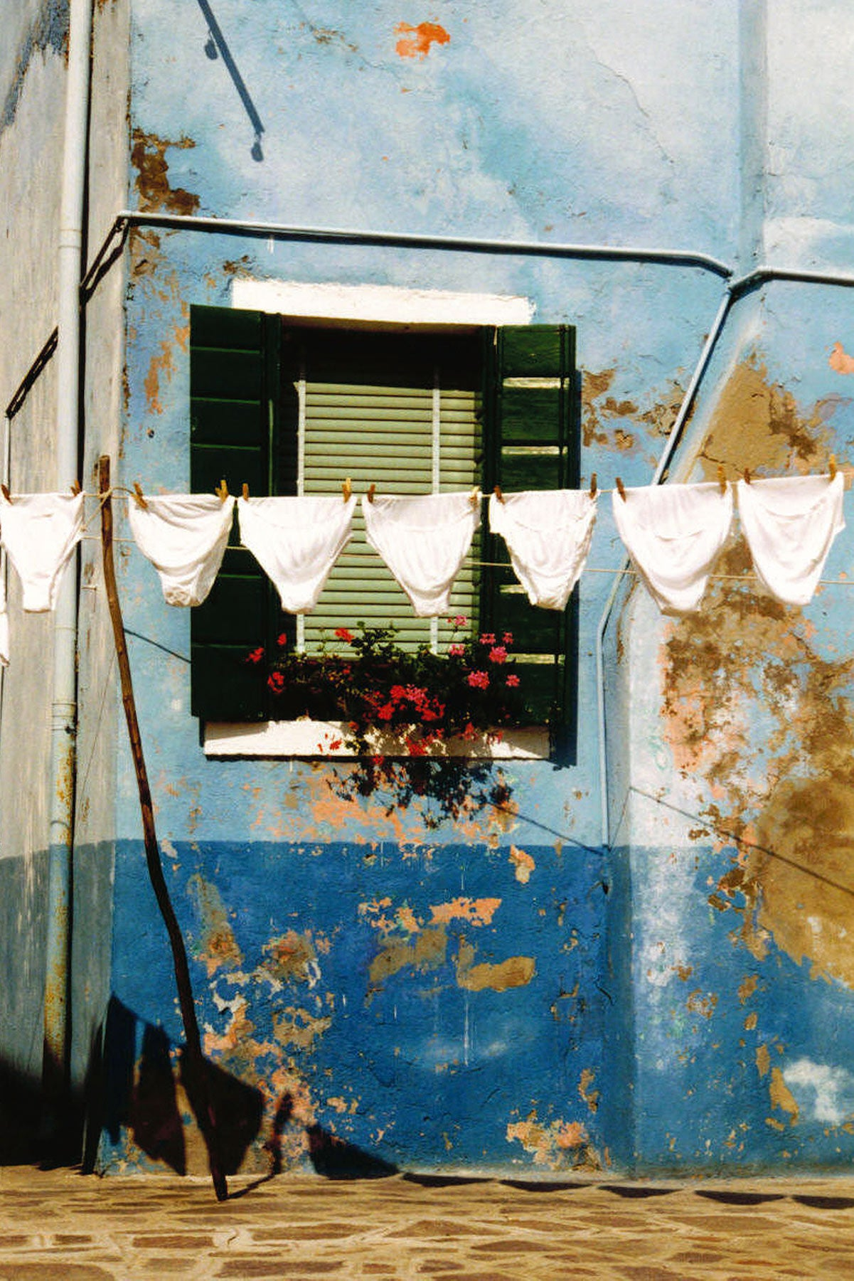 A washing line full of white knickers set against a colourful blue, but crumbling wall, with an inset window and window box of red roses.
