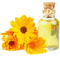 Marigold oil extract for supports hair growth in hair cosmetic Orasey keratin Diamond
