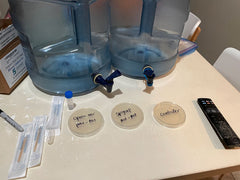 5-gallon-water-jug-with-spout-bacteria-experiment-test-setup