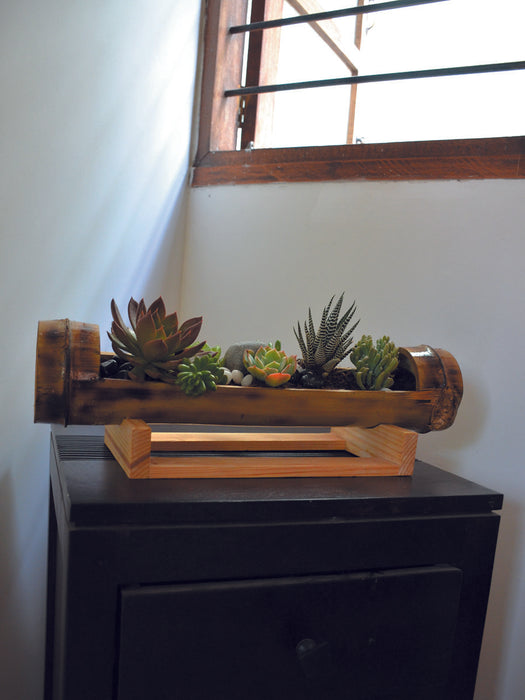 Table Top Bamboo Succulent Platter