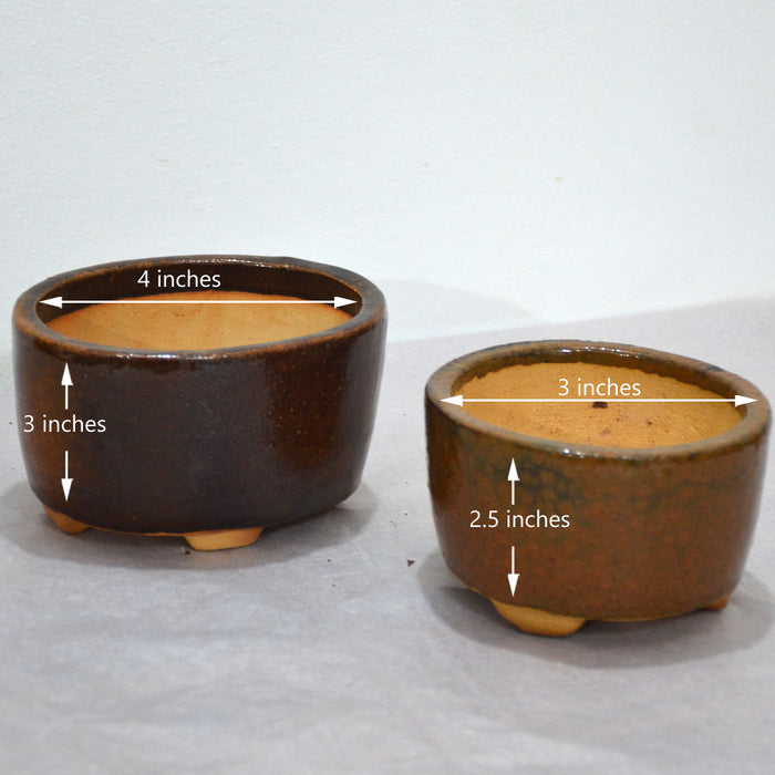 Oval Brown Bonsai Pots (Set of 2)